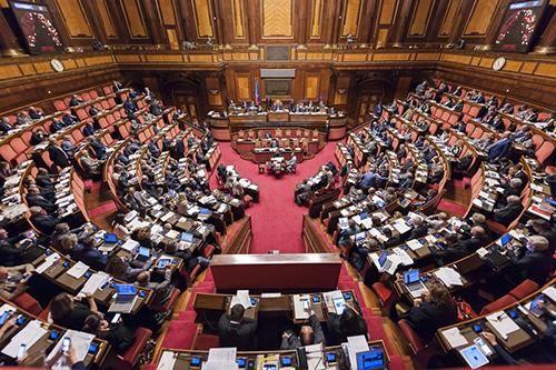 senato biotestamento temi